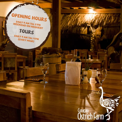 Curacao Ostrich Farm Opening Hours